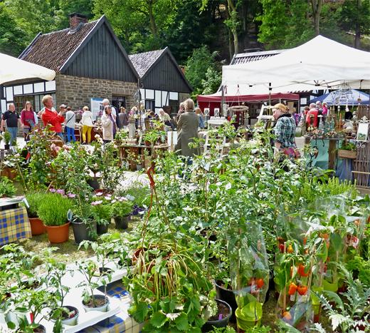 QUERBEET: Gartentage im Freilichtmuseum Hagen