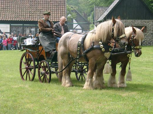 Bild zum Artikel: Historische Kutschen im Freilichtmuseum