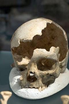Bild zum Artikel: Auf den Spuren der ältesten Westfalen