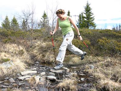 Bild zum Artikel: Nordic Walking Workshop für Übungsleiter