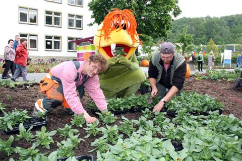 Bild zum Artikel: 53.000 Sommerblüher erobern die LGS-Beete