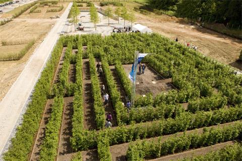 Bild zum Artikel: Irrgarten der Landesgartenschau 2010 in Hemer getauft