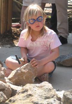 Bild zum Artikel: Fossilientag im Museum für Ur- und Frühgeschichte