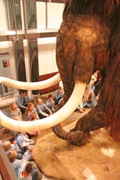 Bild zum Artikel: Kinderprogramm im Museum für Ur- und Frühgeschichte