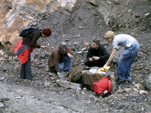 Bild zum Artikel: Fossilien im Steinbruch suchen