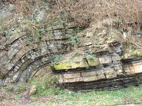 Bild zum Artikel: Geologische Exkursion am Hengsteysee