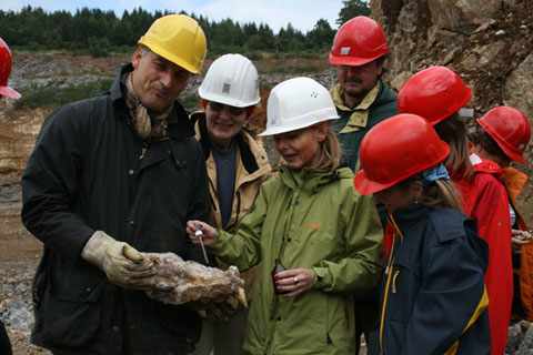 Bild zum Artikel: Fossiliensuche im Steinbruch der Hohenlimburger Kalkwerke