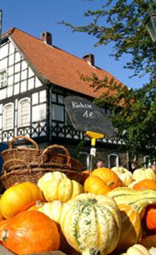 Bild zum Artikel: Herbstfest im Freilichtmuseum